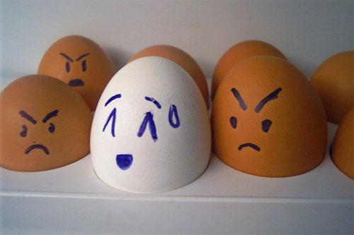 مسكين البيض....! Egg12