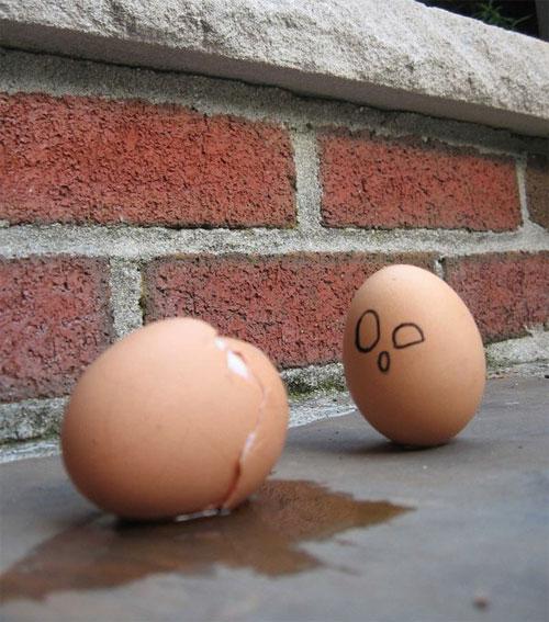 مسكين البيض....! Egg18